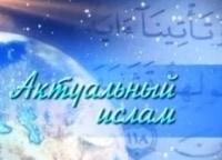 программа ТНВ: Актуальный ислам