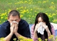 Аллергия: сбой матрицы 16 серия в 12:00 на канале