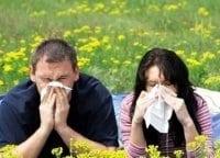 программа Здоровое ТВ: Аллергия: сбой матрицы 7 серия