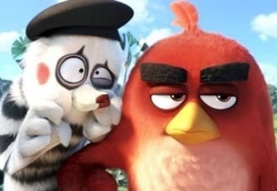 кадр из фильма Angry Birds в кино