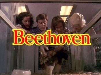 Бетховен в 10:15 на ТВ3