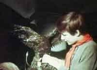программа Советское кино: Бронзовая птица 1 серия