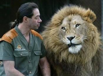 программа Продвижение: Человек и львы