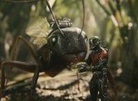 Человек муравей в 11:20 на канале