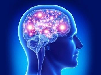 программа Здоровое ТВ: Человек разумный Бионические протезы и нейроинтерфейсы