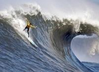 программа Русский Экстрим: Чемпионат мира по серфингу Дисциплина лонгборд