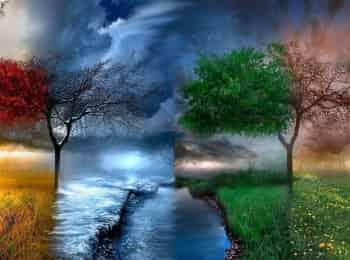 программа Загородный: Четыре сезона Посадка деревьев
