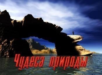 программа Калейдоскоп ТВ: Чудеса природы Гольфстрим