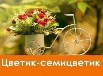 программа Карусель: Цветик семицветик