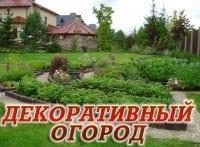 Декоративный огород Итоги лета Укладка дорожки в 12:15 на канале