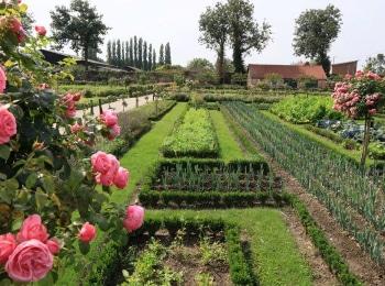 программа Загородная жизнь: Декоративный огород Разбивка клумбы довысадка рассады
