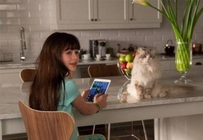 кадр из фильма Девять жизней