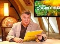 Диалоги о животных Московский зоопарк Экология в 01:25 на Россия Культура