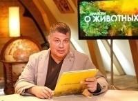 программа Россия Культура: Диалоги о животных Московский зоопарк Мастера засады