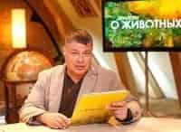 Диалоги о животных. Московский зоопарк Внимание людей к своим питомцам