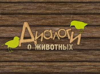Диалоги о животных Зоопарки Чехии в 02:45 на канале Культура
