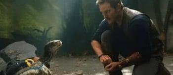 программа НТВ: Динозавр