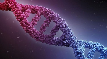 программа Пятница: ДНК шоу Еприкян