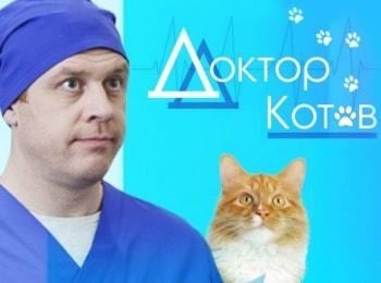 Доктор Котов в 01:30 на канале ТВ Центр