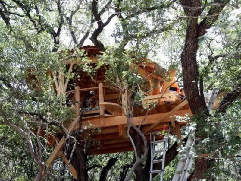 Дома на деревьях Трёхуровневый рекордсмен