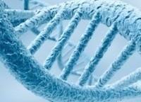 Генетика-3-серия