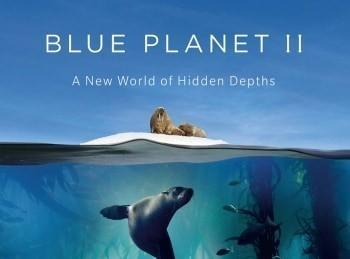 Голубая-планета-2-Зеленые-моря