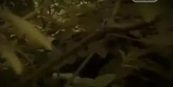 Городские легенды Древнее зло Архангельского леса в 05:00 на ТВ3