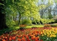 программа Усадьба: Идеальный сад 12 серия