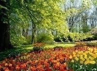 программа Усадьба: Идеальный сад 13 серия
