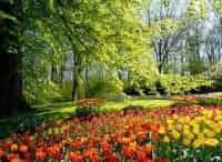 программа Усадьба: Идеальный сад 19 серия