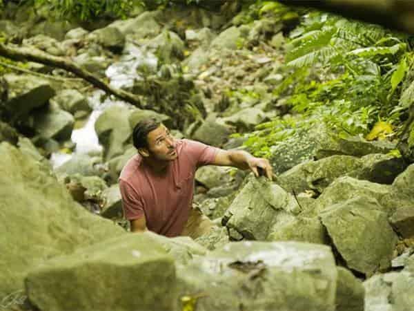 программа National Geographic: Инстинкт выживания 2 серия Дикие джунгли