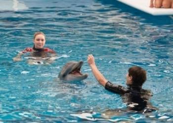 История дельфина 2 в 02:02 на РЕН ТВ