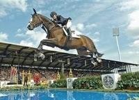 программа Евроспорт: Конный спорт Всемирные конные игры США Прямая трансляция