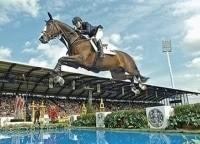 программа Евроспорт: Конный спорт Всемирные конные игры США