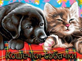 Кошечки-собачки