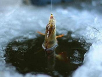 Ледовые-тропы-рыбалки-10-серия