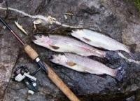 Ловля микижи на Камчатке в 16:45 на канале