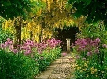 программа Загородный: Любимый сад Блекпул