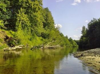 программа Охотник и рыболов: Малые реки Черноземья Малая река