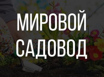программа Загородный: Мировой садовод 5 серия