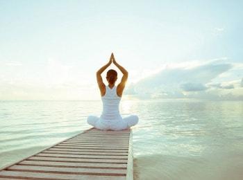 программа Fashion One: Model Yoga Muscle Strengthening