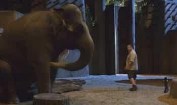 Мой парень из зоопарка в 08:10 на Кинокомедия