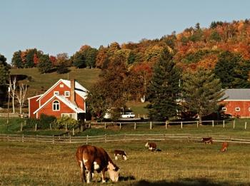 Моя-большая-семейная-ферма-2-серия
