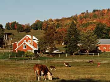 Моя-большая-семейная-ферма-3-серия