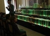 Музей оптики в 13:30 на канале