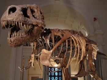 программа Travel Channel: Музейные тайны Мистификация Хьюза и многое другое