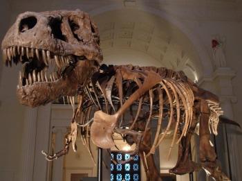 программа Travel Channel: Музейные тайны Помпеи