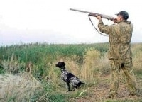 программа Охота: На охотничьей тропе 19 серия