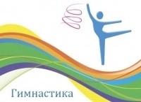 программа Первый канал: На XXXI летних Олимпийских играх в Рио де Жанейро Художественная гимнастика Групповое многоборье Финал Прямой эфир