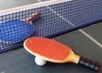 Настольный теннис Чемпионат Европы Испания Женщины Прямая трансляция в 16:30 на канале